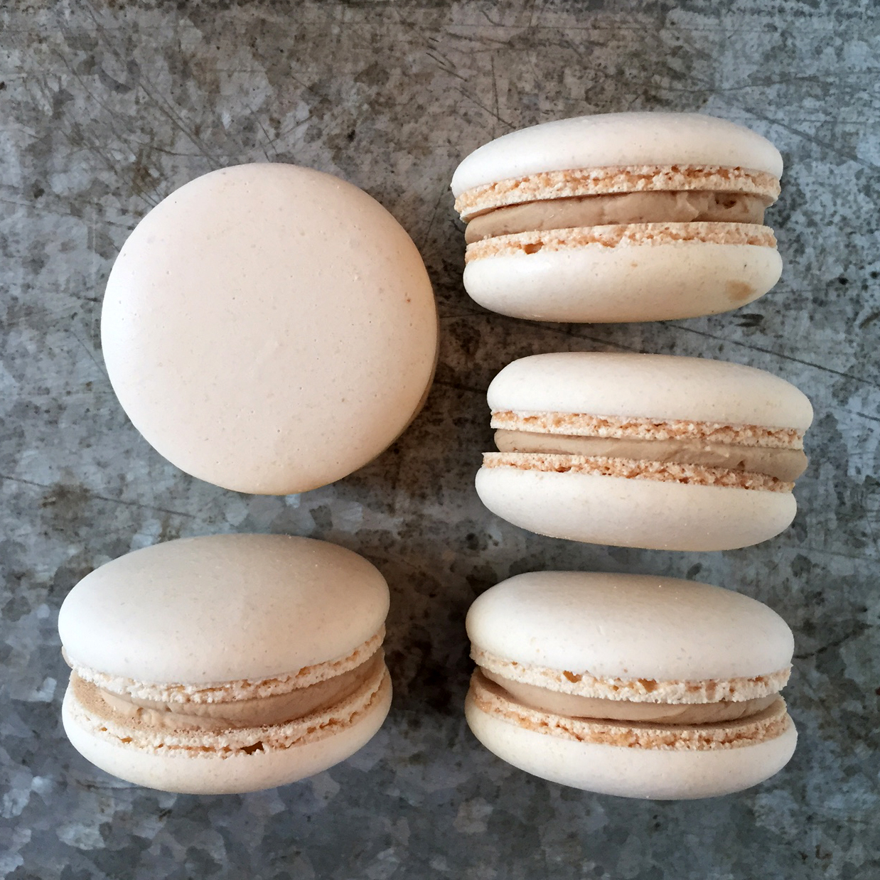 Dallas Fort Worth Bakery macarons and dessert bars for weddings and events